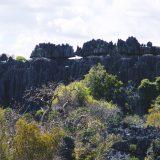 Madagascar - 2012 - 032